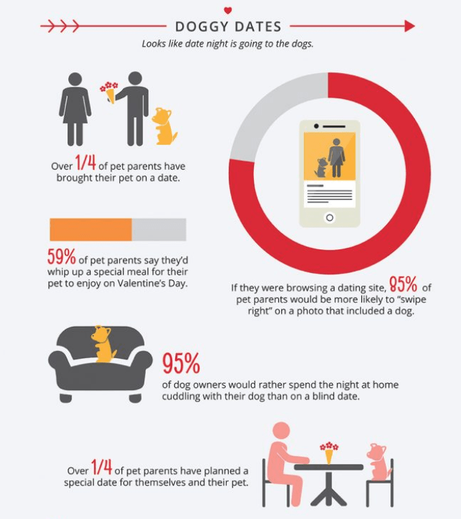 """Product - DOGGY DATES Looks like date night is going to the dogs Over 1/4 of pet parents have brought their pet on a date. 59% of pet parents say theyd whip up a special meal for their pet to enjoy on Valentine's Day. If they were browsing a dating site, 85% of pet parents would be more likely to """"swipe right"""" on a photo that included a dog. 95% of dog owners would rather spend the night at home cuddling with their dog than on a blind date. Over 1/4 of pet parents have planned a special date for"""