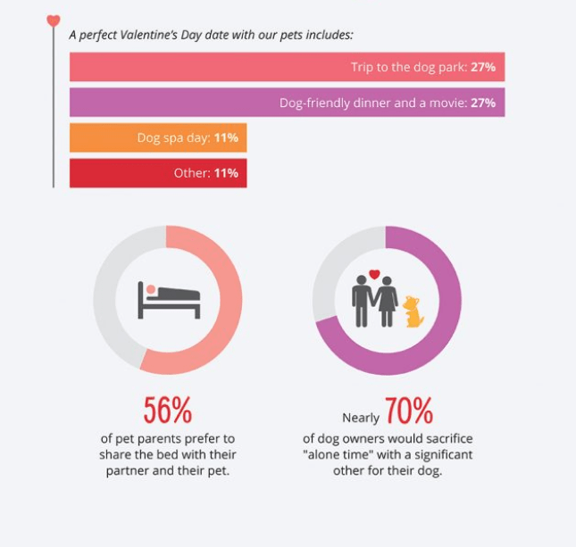 """Text - A perfect Valentine's Day date with our pets includes: Trip to the dog park: 27% Dog-friendly dinner and a movie: 27% Dog spa day: 11% Other: 11% 56% Nearly 0% of dog owners would sacrifice """"alone time"""" with a significant other for their dog. of pet parents prefer to share the bed with their partner and their pet."""