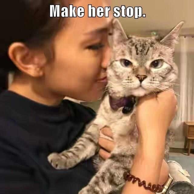 cute cat caturday looking annoyed by being smothered by a human