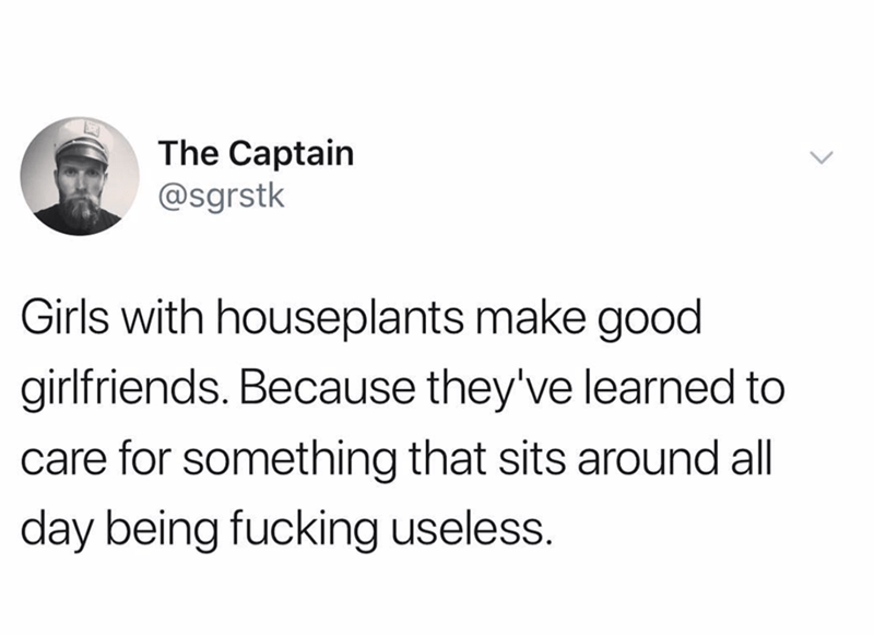 Text - The Captain @sgrstk Girls with houseplants make good girlfriends. Because they've learned to care for something that sits around all day being fucking useless.