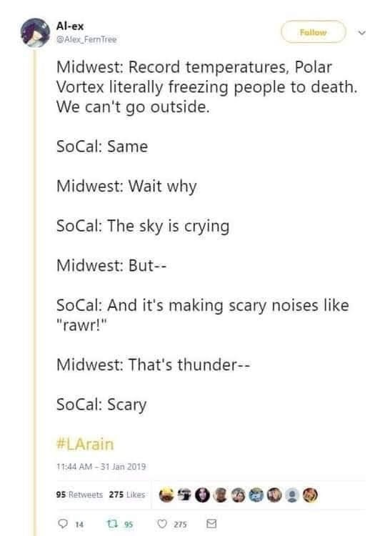 """Text - Al-ex Fallow Alex Fern Tree Midwest: Record temperatures, Polar Vortex literally freezing people to death. We can't go outside. SoCal: Same Midwest: Wait why SoCal: The sky is crying Midwest: But- SoCal: And it's making scary noises like """"rawr!"""" Midwest: That's thunder SoCal: Scary #LArain 11:44 AM-31 Jan 2019 95 Retweets 275 Likes 14 ta 95 275"""