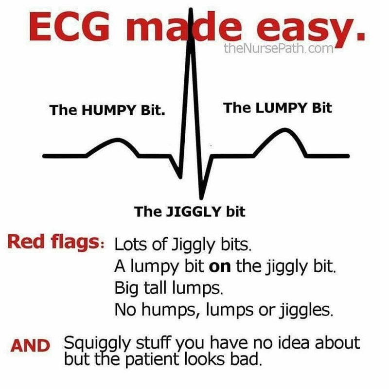 meme - Text - ECG made easy. theNursePath.com The LUMPY Bit The HUMPY Bit. The JIGGLY bit Red flags: Lots of Jiggly bits. A lumpy bit on the jiggly bit. Big tall lumps. No humps, lumps or jiggles. AND Squiggly stuff you have no idea about but the patient looks bad.