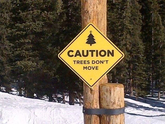 yellow sign on tree CAUTION TREES DON'T MOVE