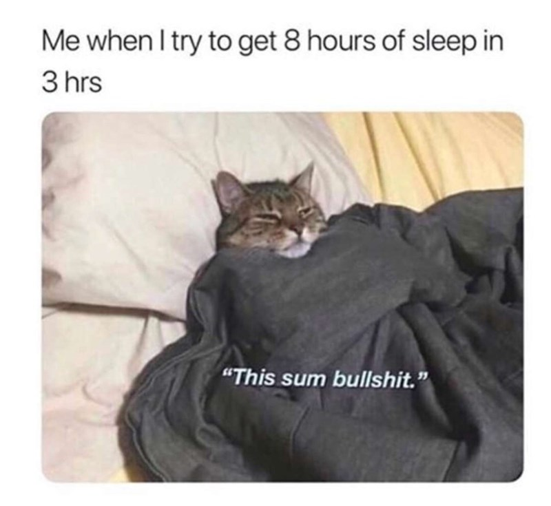 cat meme about trying to get enough sleep in a few hours