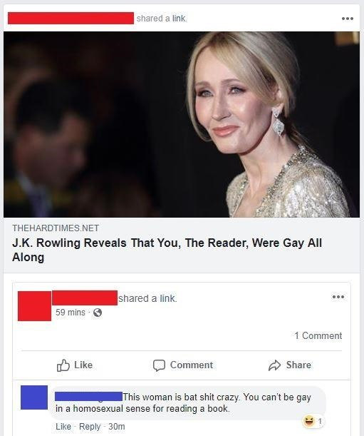Text - shared a link THEHARDTIMES NET J.K. Rowling Reveals That You, The Reader, Were Gay All Along shared a link. mins 1 Comment Like Comment Share This woman is bat shit crazy. You can't be gay in a homosexual sense for reading a book. Like Reply 30m