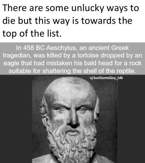 """Caption that reads, """"There are some unlucky ways to die but this way is towards the top of the list"""" above text that reads, """"In 458 BC Aeschylus, an ancient Greek tragedian, was killed by a tortoise dropped by an eagle that had mistaken his bald head for a rock suitable for shattering the shell of the reptile"""""""