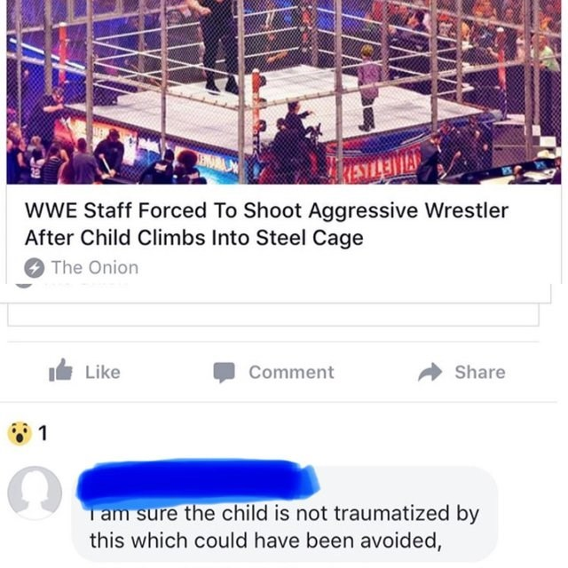 Product - ESTIRINA wWE Staff Forced To Shoot Aggressive Wrestler After Child Climbs Into Steel Cage The Onion Like Share Comment 1 Tam sure the child is not traumatized by this which could have been avoided,