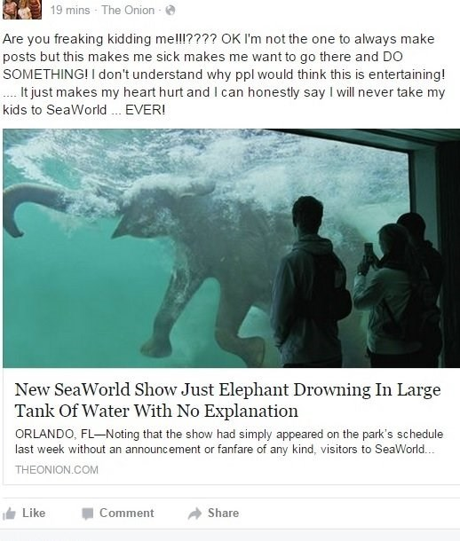 Text - 19 mins - The Onion Are you freaking kidding melll???? OK I'm not the one to always make posts but this makes me sick makes me want to go there and DO SOMETHING! I don't understand why ppl would think this is entertaining! t just makes my heart hurt and I can honestly say I will never take my kids to SeaWorld EVER! New SeaWorld Show Just Elephant Drowning In Large Tank Of Water With No Explanation ORLANDO, FL-Noting that the show had simply appeared on the park's schedule last week withou