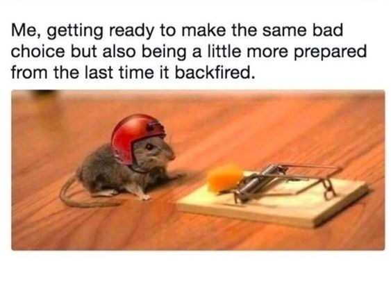 Mousetrap - Me, getting ready to make the same bad choice but also being a little more prepared from the last time it backfired.