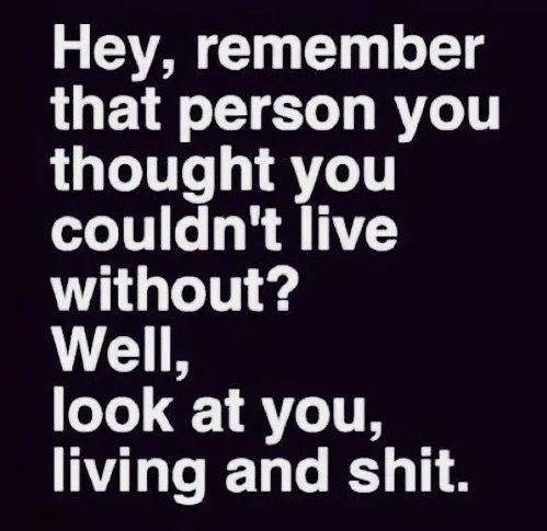 Text - Hey, remember that person you thought you couldn't live without? Well, look at you, living and shit.