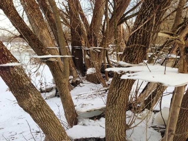 optical illusion - Snow