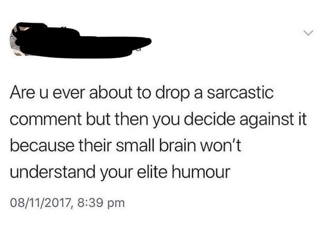 Text - Are u ever about to drop a sarcastic comment but then you decide against it because their small brain won't understand your elite humour 08/11/2017, 8:39 pm >
