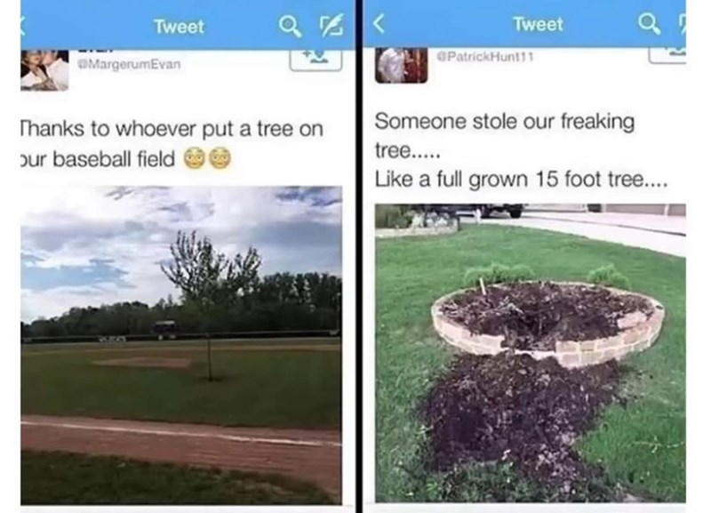 """Caption that reads, """"Thanks to whoever put a tree on our baseball field"""" above a pic of a single tree planted on a baseball field, next to caption that reads, """"Someone stole our freaking tree...like a full-grown 15-foot tree"""" above a pic of a plot where a tree had clearly been stolen"""