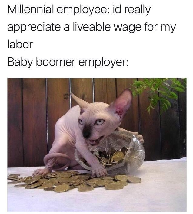 Funny meme about baby boomers and millennials.