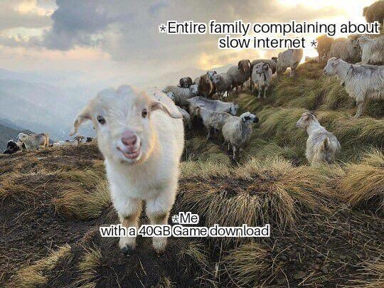 Goats - Entire family complaining about slow internet Me with a 40GBGame download