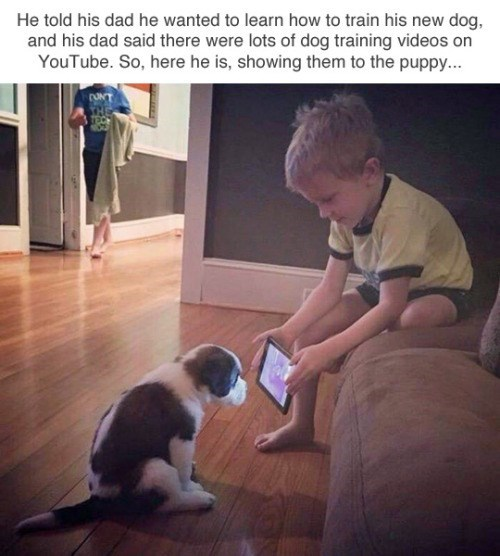 "Caption that reads, ""He told his dad he wanted to learn how to train his new dog, and his dad said there were lots of dog-training videos on YouTube. So here he is, showing them to the puppy"" above a pic of a little kid showing an iPad to a little puppy"