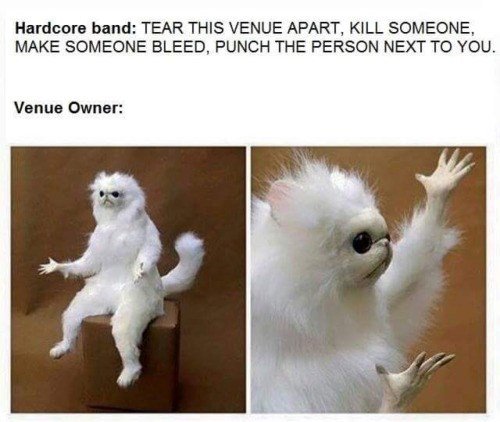 meme - Photo caption - Hardcore band: TEAR THIS VENUE APART, KILL SOMEONE MAKE SOMEONE BLEED, PUNCH THE PERSON NEXT TO YOU. Venue Owner: