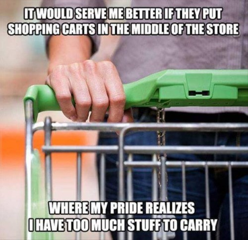 meme - Product - ITWOULD SERVE MEBETTER IF THEY PUT SHOPPING CARTS INTHE MIDDLE OFTHE STORE WHERE MY PRIDE REALIZES OHAVE TOO MUCH STUFFTO CARRY