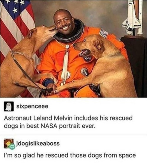 Photo caption - sixpenceee Astronaut Leland Melvin includes his rescued dogs in best NASA portrait ever. jdogislikeaboss I'm so glad he rescued those dogs from space