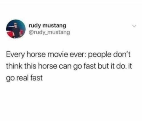 Text - rudy mustang @rudy mustang Every horse movie ever: people don't think this horse can go fast but it do. it go real fast