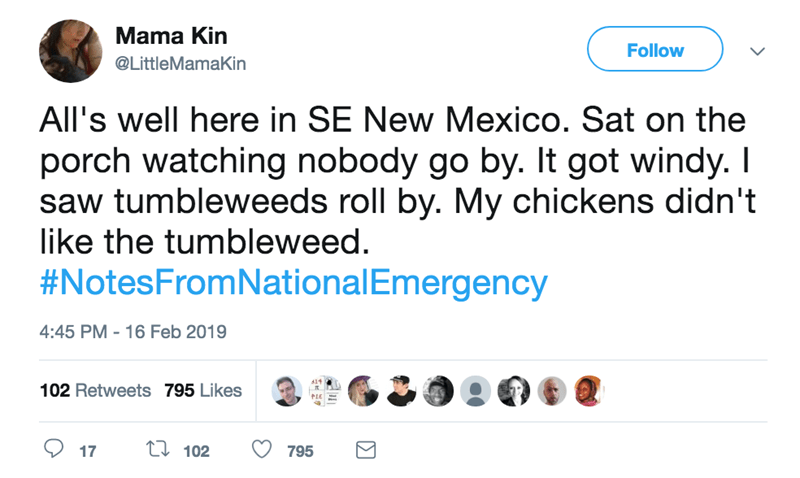screenshot of twitter post about national emergency all's well here in SE New Mexico. Sat on the porch watching nobody go by. It got windy. I saw tumbleweeds roll by. My chickens didn't like the tumbleweed. #NotesFromNationalEmergency