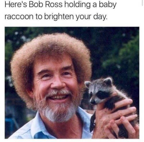wholesome meme of Bob Ross with a baby raccoon