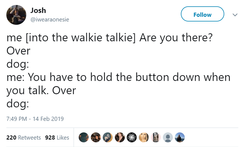 Text - Josh Follow @iwearaonesie me [into the walkie talkie] Are you there? Over dog: me: You have to hold the button down when you talk. Over dog: 7:49 PM - 14 Feb 2019 220 Retweets 928 Likes