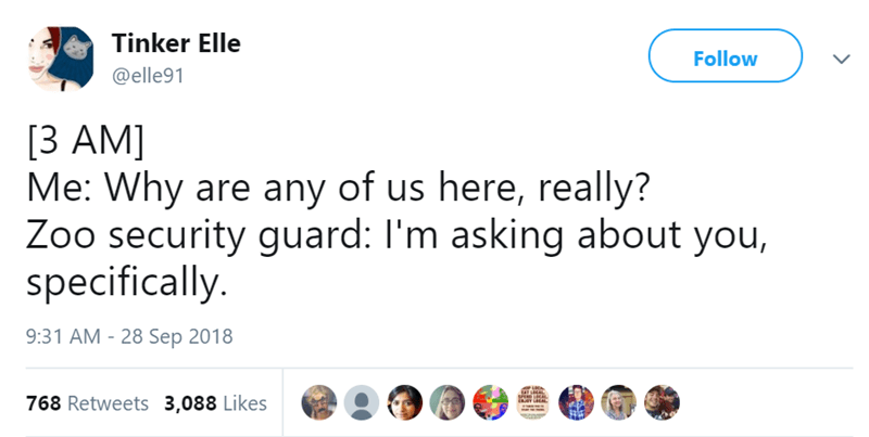 Text - Tinker Elle Follow @elle91 [3 AM] Me: Why are any of us here, really? Zoo security guard: I'm asking about you, specifically. 9:31 AM - 28 Sep 2018 SPER AL 768 Retweets 3,088 Likes w