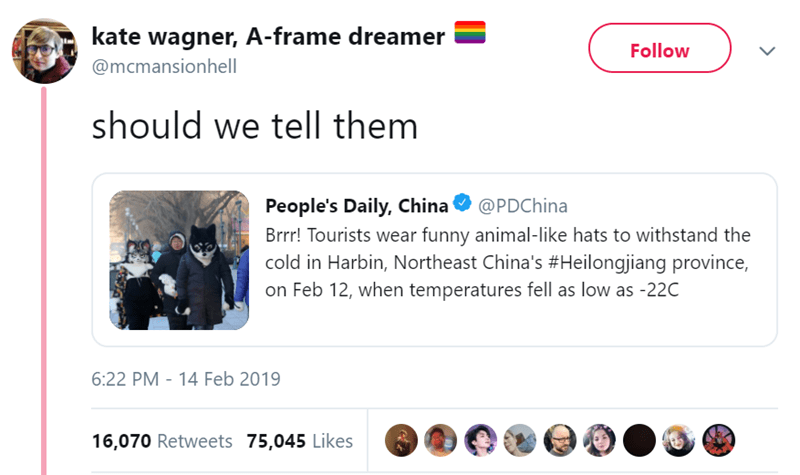Text - kate wagner, A-frame dreamer Follow @mcmansionhell should we tell them People's Daily, China Brrr! Tourists wear funny animal-like hats to withstand the cold in Harbin, Northeast China's #Heilongjiang province, on Feb 12, when temperatures fell as low as -22C @PDChina 6:22 PM - 14 Feb 2019 16,070 Retweets 75,045 Likes