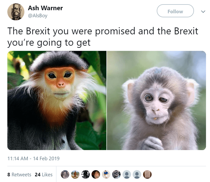 Mammal - Ash Warner Follow @AlsBoy The Brexit you were promised and the Brexit you're going to get 11:14 AM - 14 Feb 2019 8 Retweets 24 Likes