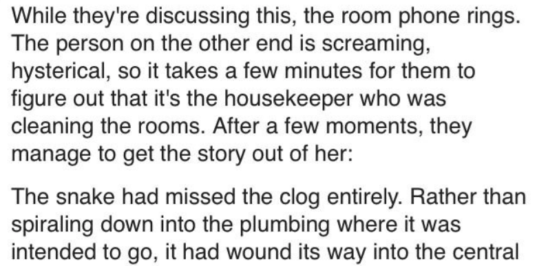 Text - While they're discussing this, the room phone rings. The person on the other end is screaming, hysterical, so it takes a few minutes for them to figure out that it's the housekeeper who was cleaning the rooms. After a few moments, they manage to get the story out of her: The snake had missed the clog entirely. Rather than spiraling down into the plumbing where it was intended to go, it had wound its way into the central