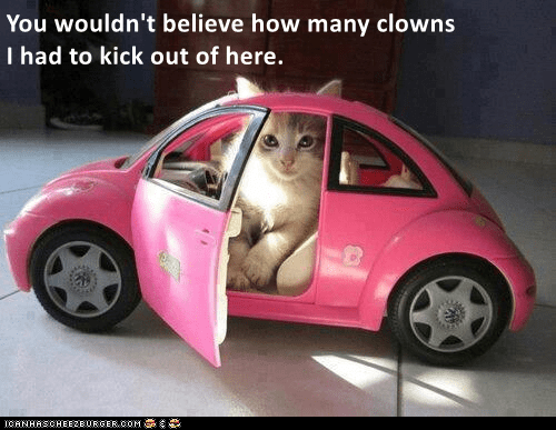 cat meme - Land vehicle - You wouldn't believe how many clowns I had to kick out of here. ICANHASCHEEZEURGER.OOM