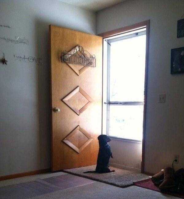 Door - 4VE