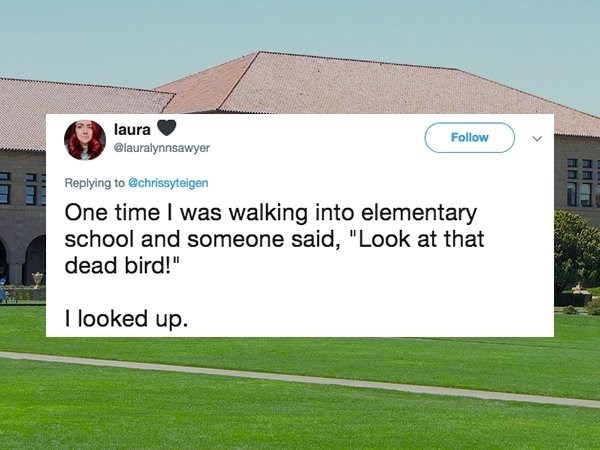 """Text - laura Follow @lauralynnsawyer Replying to @chrissyteigen One time I was walking into elementary school and someone said, """"Look at that dead bird!"""" I looked up"""