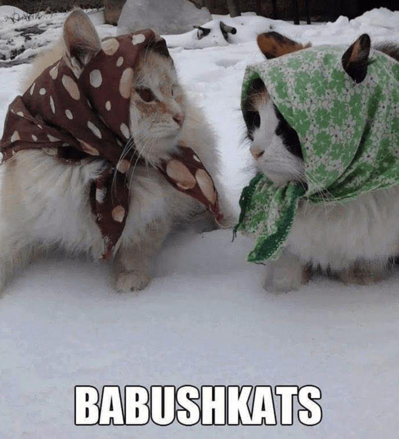 Photo caption - BABUSHKATS