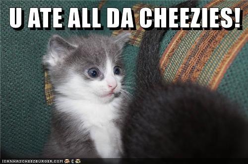 Cheezburger Image 9272721664