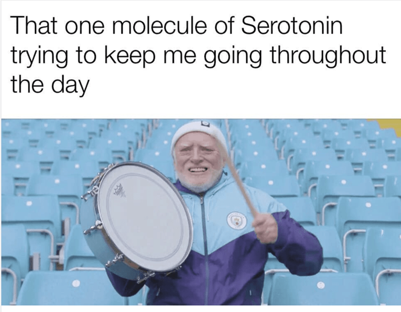 Drum - That one molecule of Serotonin trying to keep me going throughout the day