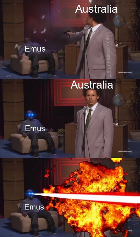 "Three panels where Eric Andre represents ""Australia"" and the guy in the chair being shot represents ""Emus;"" in the last panel, the guy in the chair represents ""emus"" with laser beams for eyes"