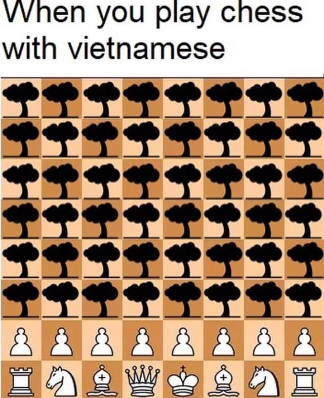 Games - When you play chess with vietnamese