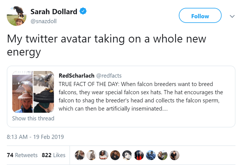 Text - Sarah Dollard Follow @snazdoll My twitter avatar taking on a whole new energy RedScharlach @redfacts TRUE FACT OF THE DAY: When falcon breeders want to breed falcons, they wear special falcon sex hats. The hat encourages the falcon to shag the breeder's head and collects the falcon sperm, which can then be artificially inseminated... Show this thread 8:13 AM - 19 Feb 2019 74 Retweets 822 Likes