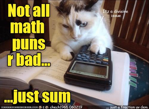 Cat - Not all math puns r bad... Itz a divisive issue .Just sum chech1965 060219 ICANHASCHEEZBURGER COM just a fraction uv dem