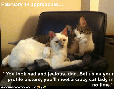 """Cat - February 14 approaches... """"You look sad and jealous, dad. Set us as your profile picture, you'll meet a crazy cat lady in no time."""" CRNHRSCHEERBuRCER. COM"""