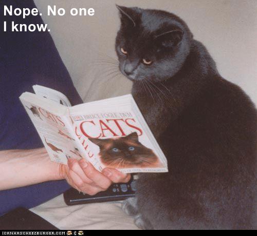 Cat - Nope. No one I know. ICE FOOE N CALS ICANHASCHEE2EURGER COM