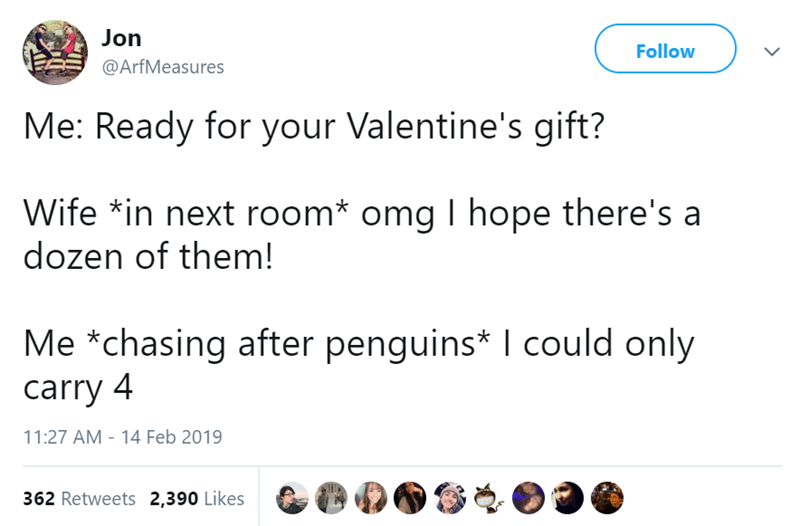 Text - Jon Follow @ArfMeasures Me: Ready for your Valentine's gift? Wife *in next room* omg I hope there's a dozen of them! Me *chasing after penguins* I could only carry 4 11:27 AM 14 Feb 2019 362 Retweets 2,390 Likes