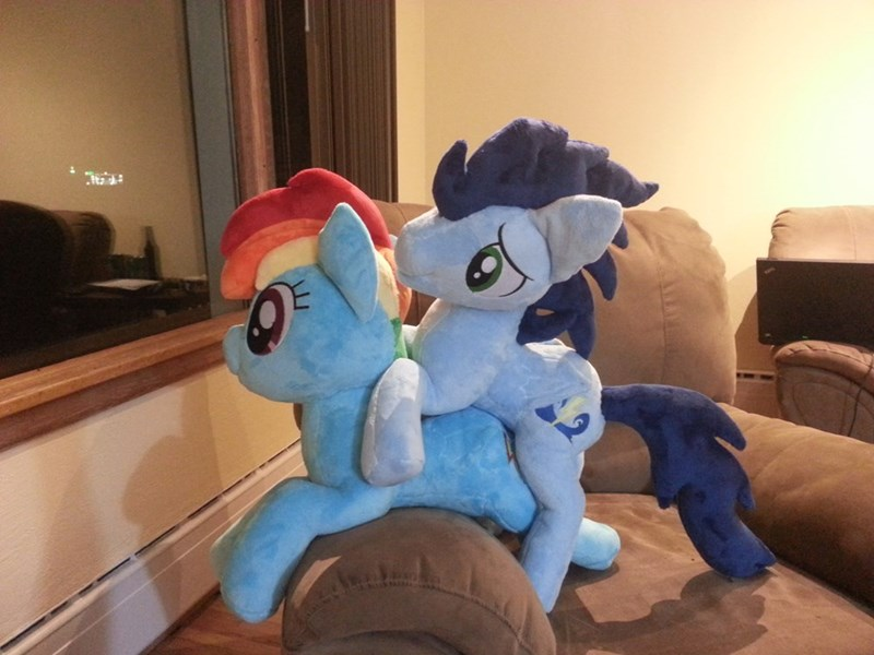 shipping Plush soarin pennie's pony plushies rainbow dash - 9273142528