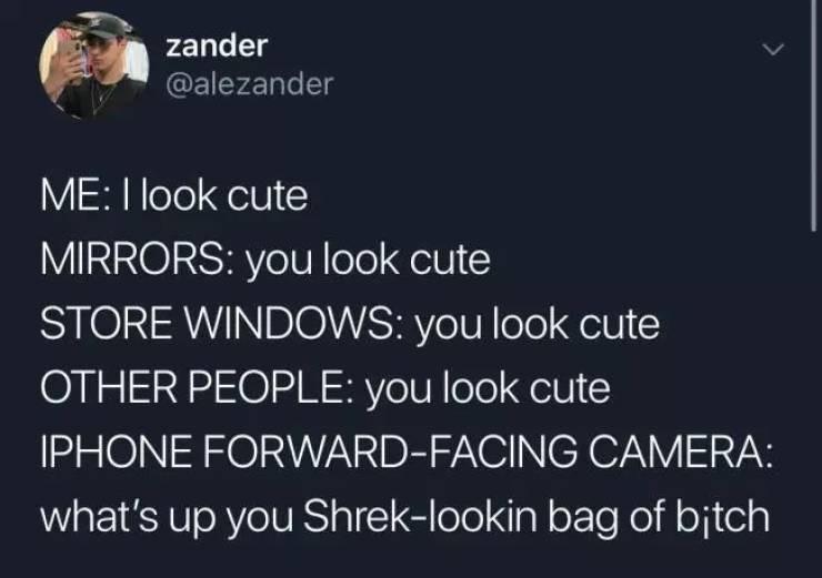 Text - zander @alezander ME: I look cute MIRRORS: you look cute STORE WINDOS: you look cute OTHER PEOPLE: you look cute IPHONE FORWARD-FACING CAMERA: what's up you Shrek-lookin bag of bitch