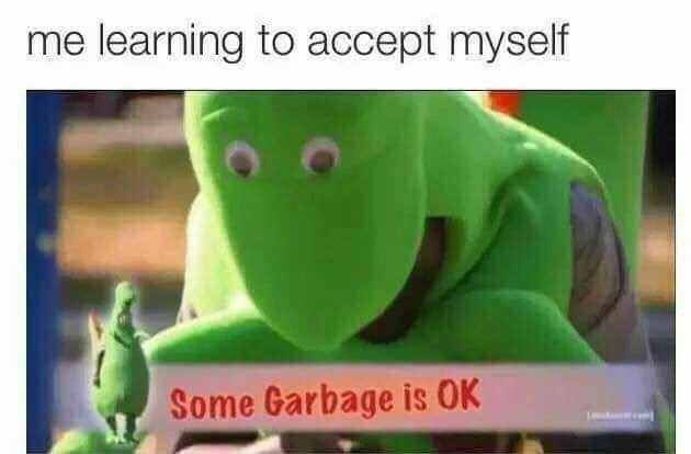 "Caption that reads, ""Some garbage is okay"" above a still of a guy in a dinosaur suit with text that reads, ""Some garbage is okay"""