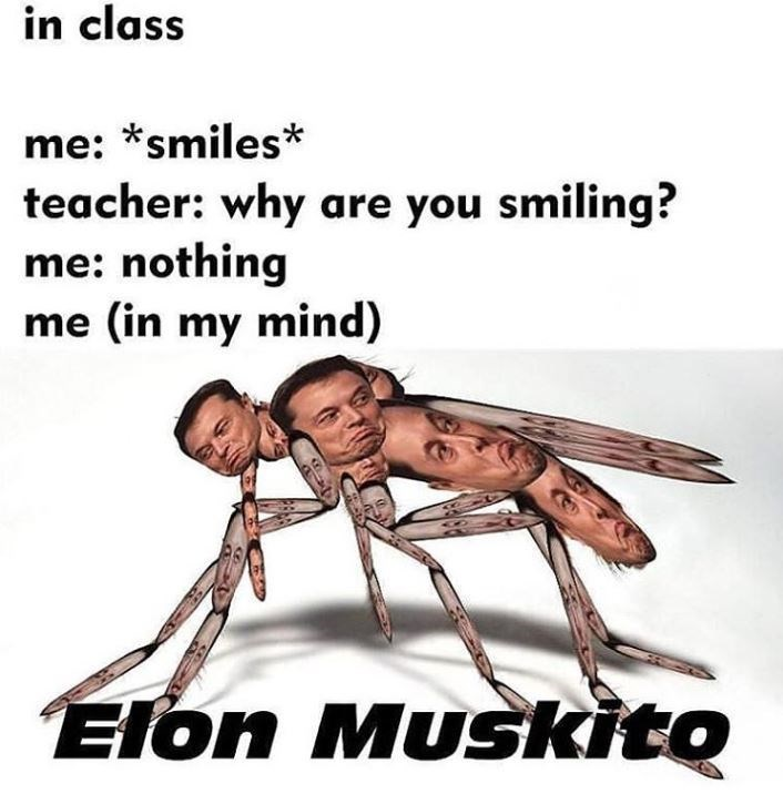 spicy meme about elon musk as a mosquito