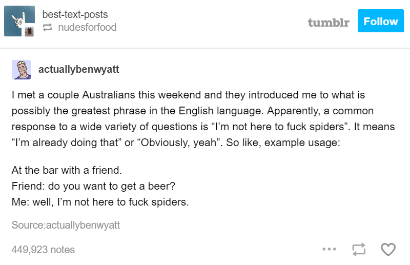 """Text - best-text-posts nudesforfood Follow tumblr actuallybenwyatt I met a couple Australians this weekend and they introduced me to what is possibly the greatest phrase in the English language. Apparently, a common response to a wide variety of questions is """"I'm not here to fuck spiders"""". It means """"I'm already doing that"""" or """"Obviously, yeah"""". So like, example usage: At the bar with a friend. Friend: do you want to get a beer? Me: well, I'm not here to fuck spiders. Source:actuallybenwyatt 449,"""