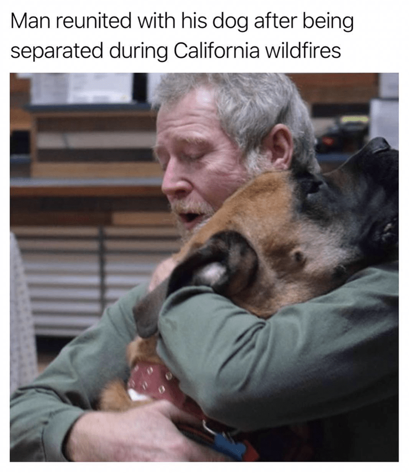 Photo caption - Man reunited with his dog after being separated during California wildfires